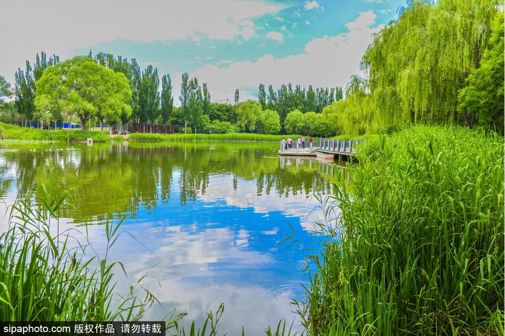 High temperature warning, come to these summer resorts in the suburbs of Beijing