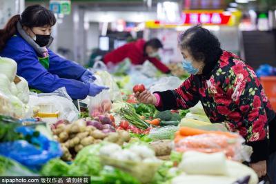 囤菜指南 非常时期蔬菜应该怎么保存?