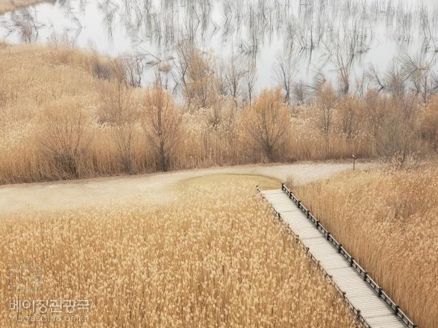 [영상] 예야후 국가습지공원 가을