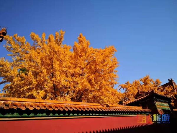 Осеннее очарование Гугуна