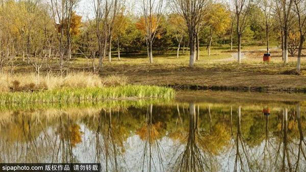 """人少、免費、秋色美!北京這個""""巨無霸""""公園,相當于5個奧森!"""