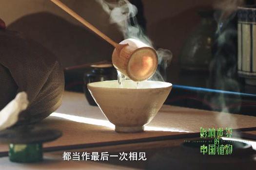饮茶:更是一种文化意境